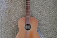 ($20) Guitar - nylon strings